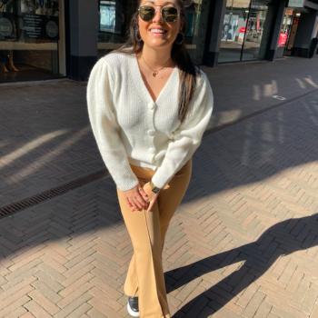 Flair pants beige